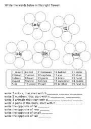 English Worksheets: family, body ....