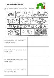 English Worksheet: The very hungry caterpillar