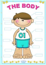English Worksheets: The Body  (for boys)