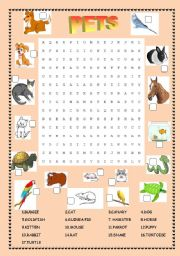 English Worksheets: Wordsearch : pets