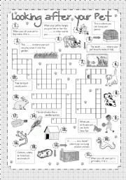 English Worksheets: Crossword - Looking after your Pet