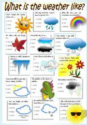 English Worksheet: WEATHER & SEASONS