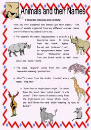 English Worksheet: Animals and their Names - Reading Comprehension with Key