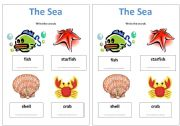 English Worksheets: The Sea