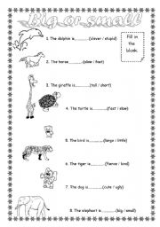 English Worksheet: big or small