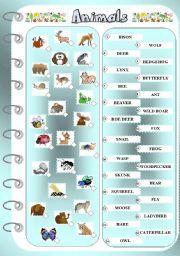 English Worksheets: Animals 2 - Matching Exercise