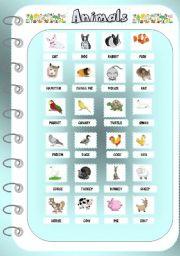 English worksheet: Animals 1 _Pictionary