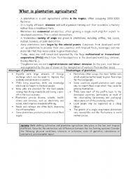 English Worksheets: Plantation Agriculture