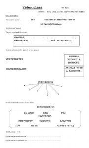 vertebrates worksheets. Black Bedroom Furniture Sets. Home Design Ideas