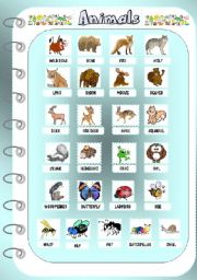 English Worksheets: Animals 2 - Pictionary