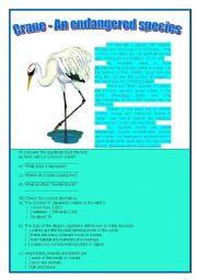 English Worksheets: CRANE