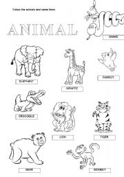 wild animals esl worksheet by anna22. Black Bedroom Furniture Sets. Home Design Ideas