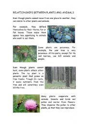 English Worksheets: Relationship between plants and animals:Reading and questions.Great for Science!