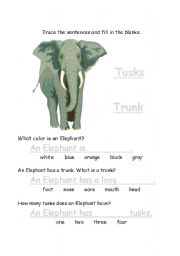 English Worksheets: Elephants