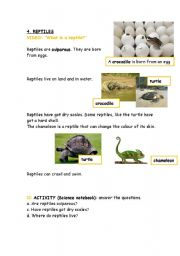 English Worksheet: Animals.Reptiles.Description with questions