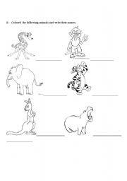 English Worksheets: animal- world