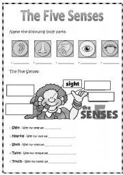 english worksheets the 5 senses. Black Bedroom Furniture Sets. Home Design Ideas