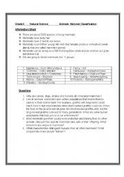 English Worksheet: Animal classification