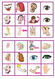 English Worksheets: body parts bingo 3