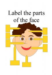 English Worksheets: Facial features