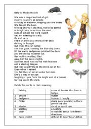 English Worksheet: Poem Sally by Phoebe Hesketh