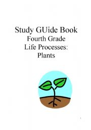 A Beginner\\\'s Guide To The Study Of Plant Structure ...