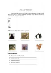 English Worksheets: Animals in the forest