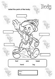 English Worksheets: Body labelling