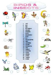 English Worksheets: BIRDS AND INSECTS MATCHING