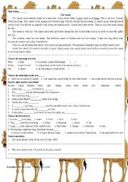 English Worksheets: the camel