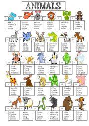 English Worksheet: animal