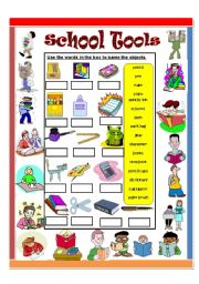 English Worksheet: School Tools