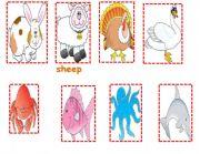 English Worksheets: animals cards