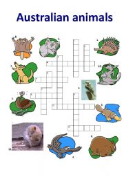 English Worksheet: Australian Animals I