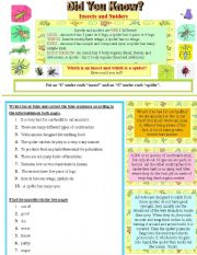English Worksheet: Did you know? Insects and Spiders