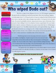 English Worksheets: bird.. who wiped dodo out?