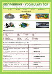 English Worksheets: ENVIRONMENT - VOCABULARY BOX