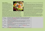 Sushi : History, Types, Interesting facts