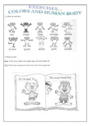 English Worksheets: COLORS AND HUMAN BODY