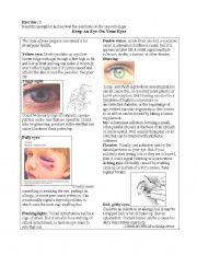 English Worksheets: pamphlet