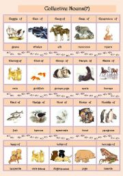 English Worksheets: Collective Nouns (animals) 7