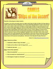 English Worksheet: Camels - Ships of the Desert: A Reading Comprehension