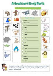 English Worksheet: Animals and Body Parts  2/2