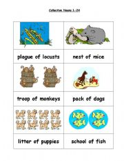 English Worksheets: Collective nouns 1 to 24