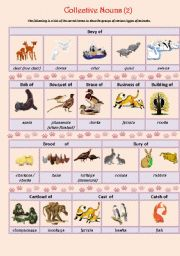 English Worksheets: Collective Nouns (animals) 2