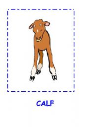 English Worksheet: ANIMALS FLASHCARDS.CALF,MONKEY,BIRD,HORSE....