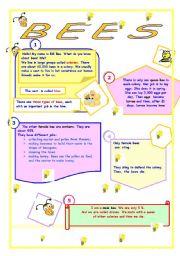 English Worksheet: Bees�life