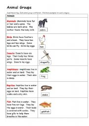English Worksheets: Animal Groups