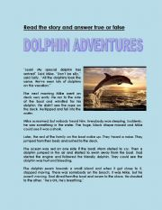 English Worksheet: Dolphin Adventure