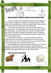 English Worksheets: Bears ( 3 pages / + Compare & Contrast Strategy  )
